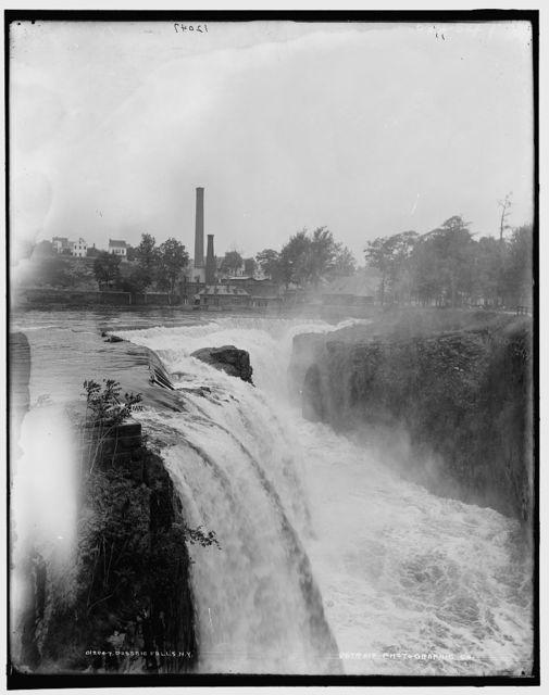 Passaic Falls, N.Y. [i.e. N.J.]
