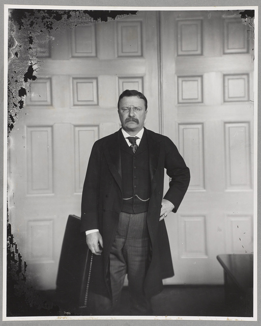 [President Theodore Roosevelt in his office]