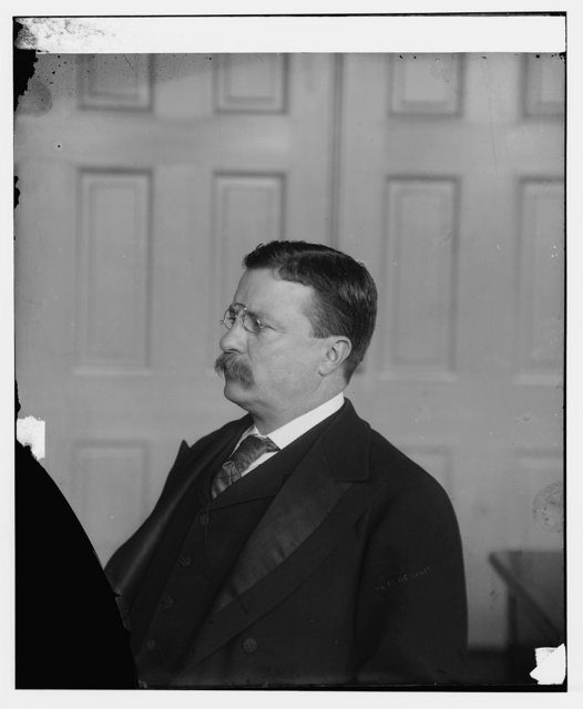 Roosevelt, Pres. Theo. photographed in office (White House?)