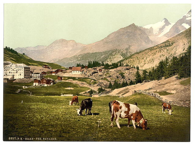 [Saas Fee, a landscape, Valais, Alps of, Switzerland]