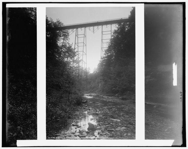 Shawmut Bridge, above Dansville, N.Y.