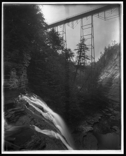 [Stony Brook glen, Shawmut Bridge, Dansville, N.Y.]