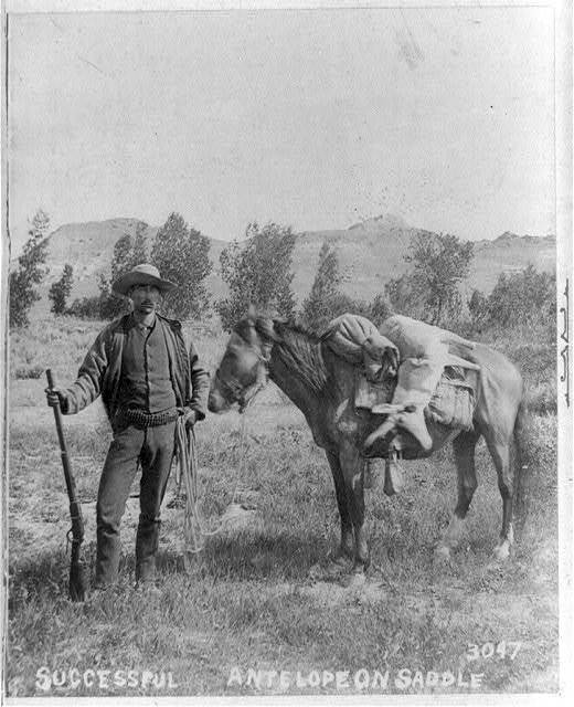 Successful. Antelope on saddle / photographed by T.W. Ingersoll, St. Paul.