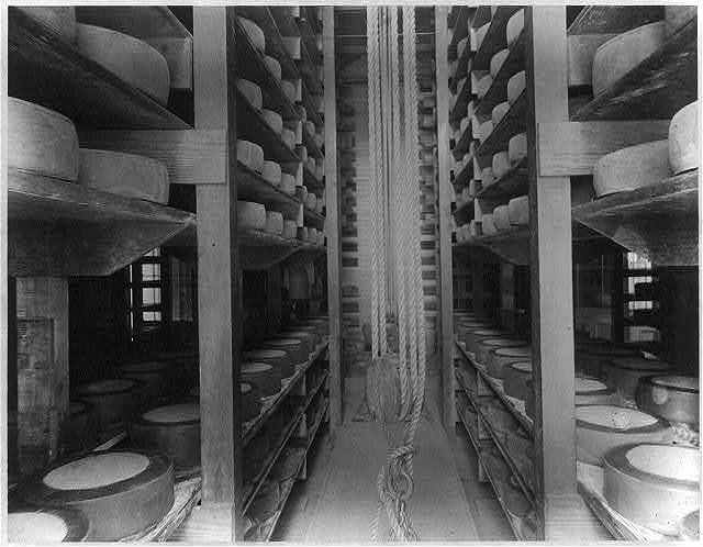 [The curing room in the dairy house, Kern Island Dairy, Kern County, Calif., showing the shelving and manner of storing the cheese]