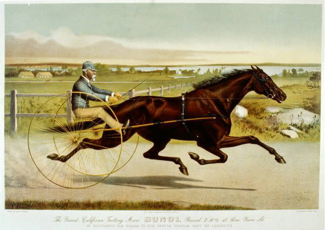 The grand California trotting mare Sunol record 2:10 1/2 at three years old: by Electioneer - dam Waxana by Gen'l Benton, Grandam Waxy by Lexington