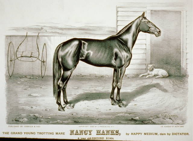 The grand young trotting mare Nancy Hanks, by Happy Medium, dam by Dictator