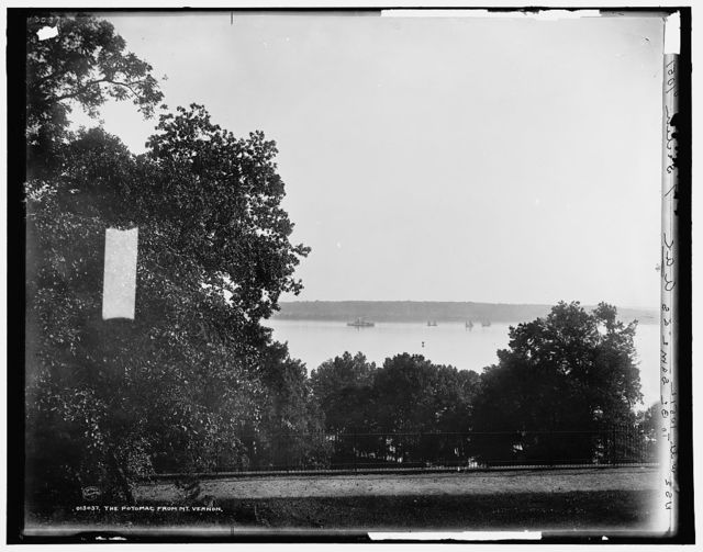 The Potomac from Mt. Vernon