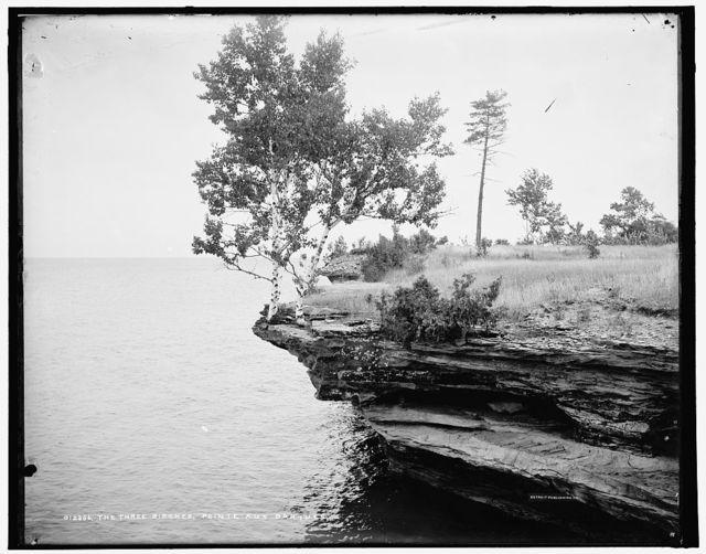 The Three birches, Pointe aux Barques