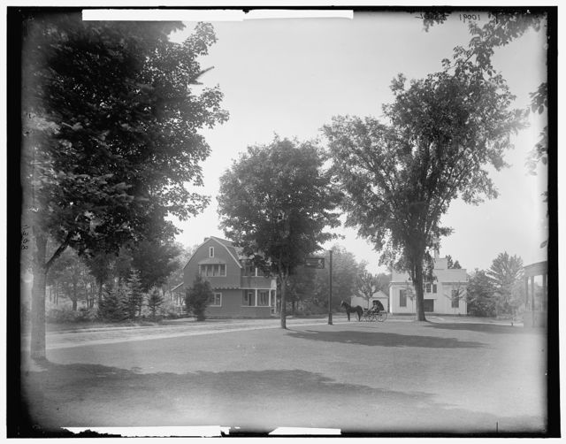 [Wentworth Hall and cottages, Jackson, N.H.]