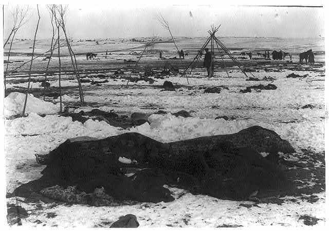 [Big Foot's camp three weeks after the Wounded Knee Massacre (Dec. 29, 1890), with bodies of several Lakota Sioux people wrapped in blankets in the foreground and U.S. soldiers in the background]