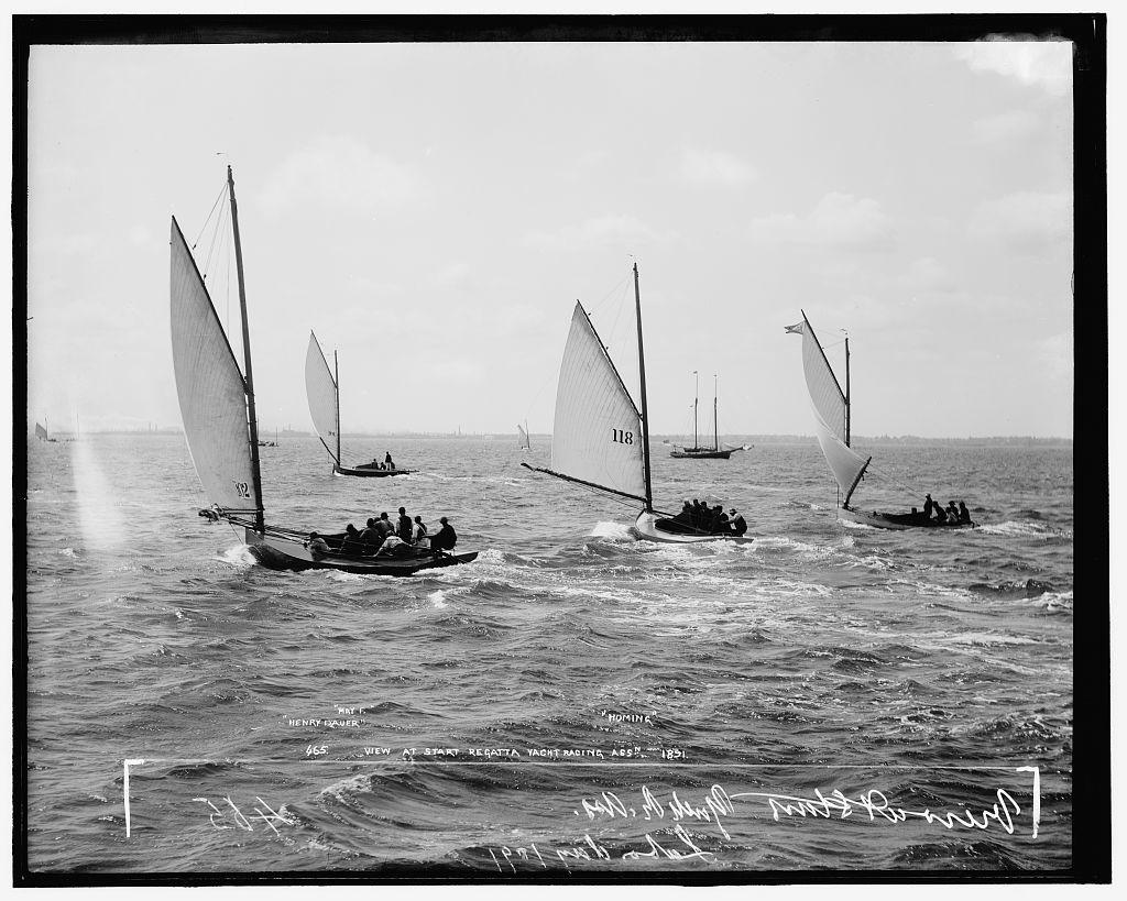 Henry Dauer, May F., [and] Homing, view at start, regatta, yacht racing assn. [association]