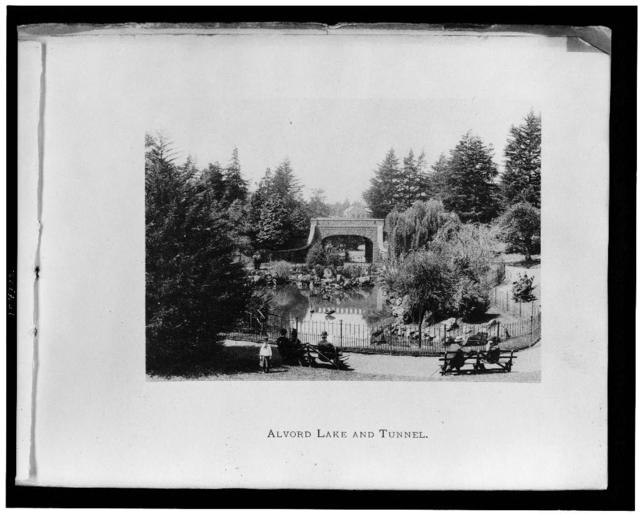 Alvord Lake and tunnel / Albertype Co., N.Y.