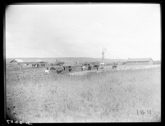 Farm of Joseph Readhead, Merna, Custer County, Nebraska.