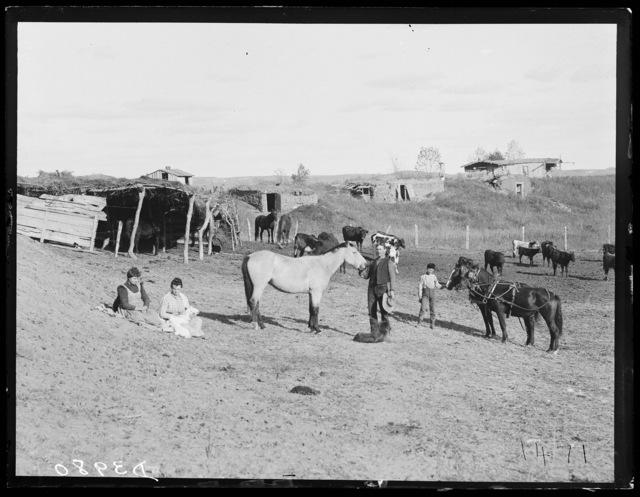 Farm scene in southwestern Custer County, Nebraska.