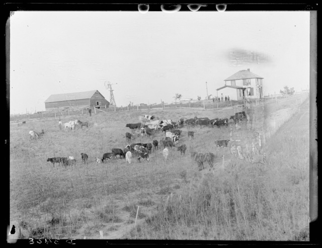 Middeswartz ranch  (formerly the Able ranch), on the South Loup River, Custer County, Nebraska.