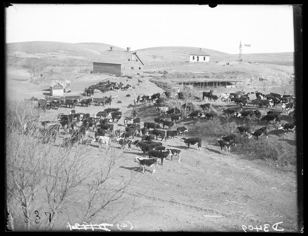 Robert Hunter ranch six miles northwest of Broken Bow, Nebraska.