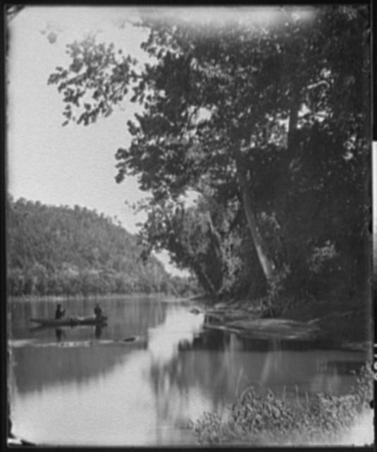 The Potomac