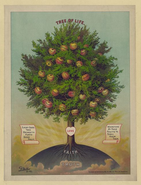 Tree of life / G. Butters ; designed by Rev. J.A. Hammond.
