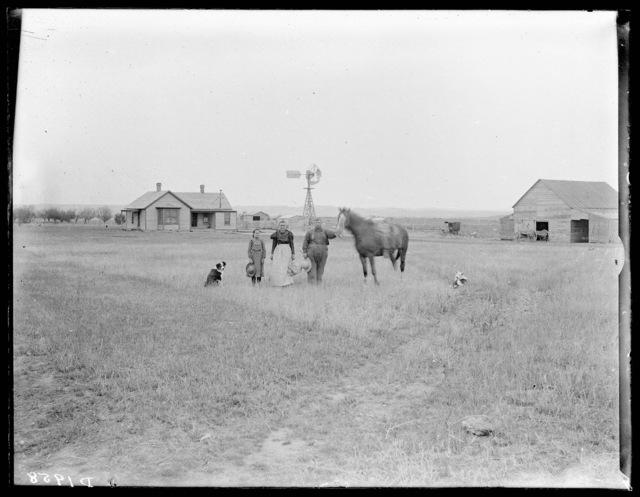 Whaley, Callaway, Custer County, Nebraska.