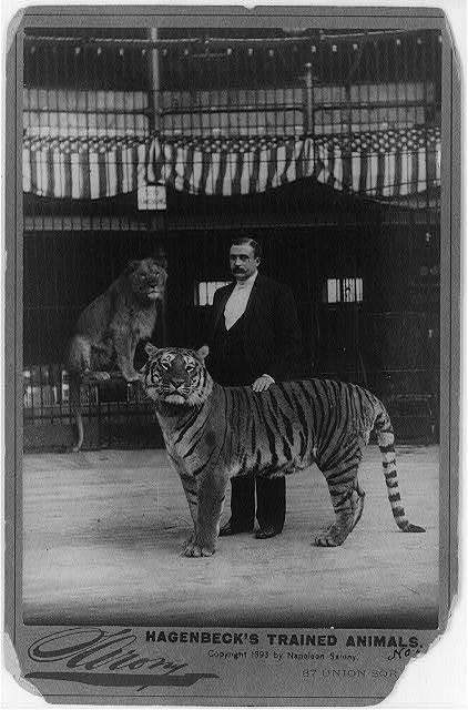 Hagenbeck's trained animals