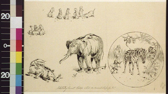 [Prairie dogs, animals at table, opossum family, tethered elephant, and monkeys painting zebra]