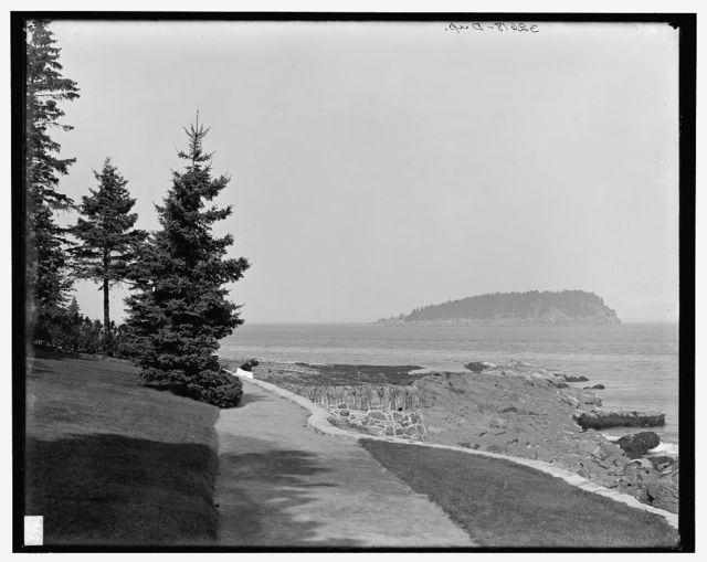 [Bar Harbor on the shore path, Mount Desert Island, Me.]