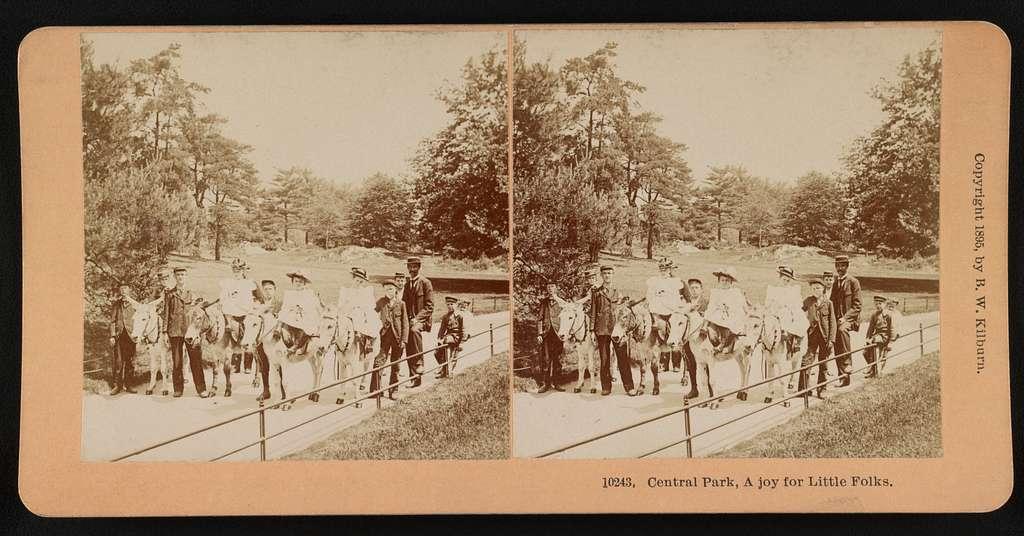 Central Park, a joy for little folks
