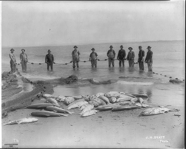 [Salmon fishing on Columbia River, Ore.: 10 fishermen posed with net and catch]