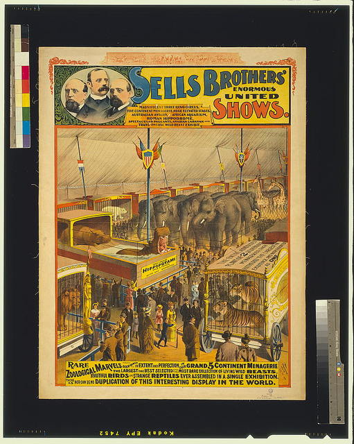 Sells Brothers' enormous united shows--Rare zoological marvels ...