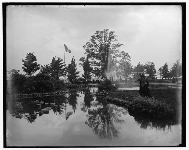 [The Lily pond, Belle Isle Park, Detroit, Mich.]