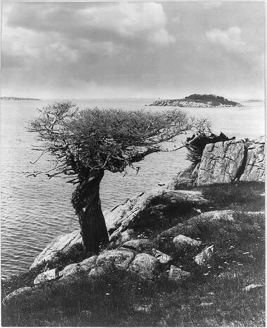 Mariner's Landmark