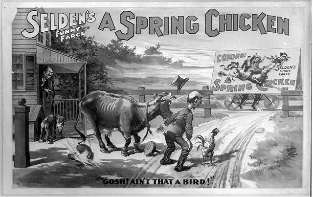 Selden's funny farce, A spring chicken