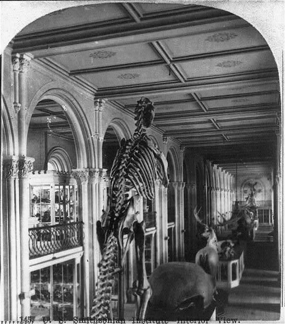 U.S. Smithsonian Institute [sic] - interior view
