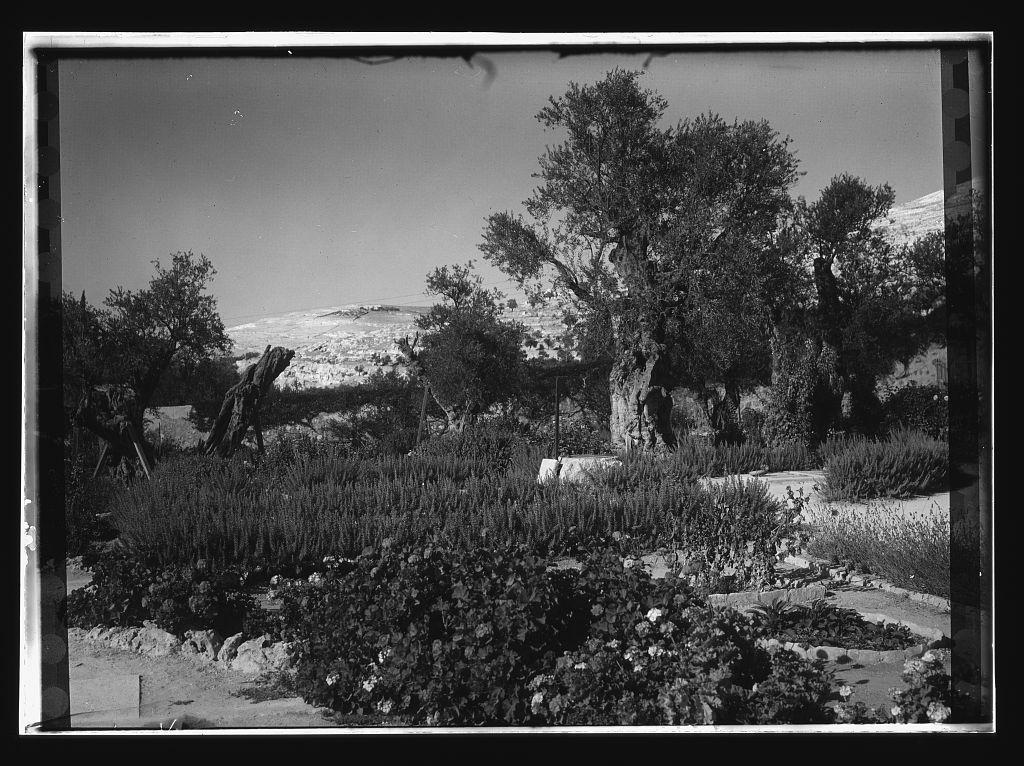 Am. Colony courtyard