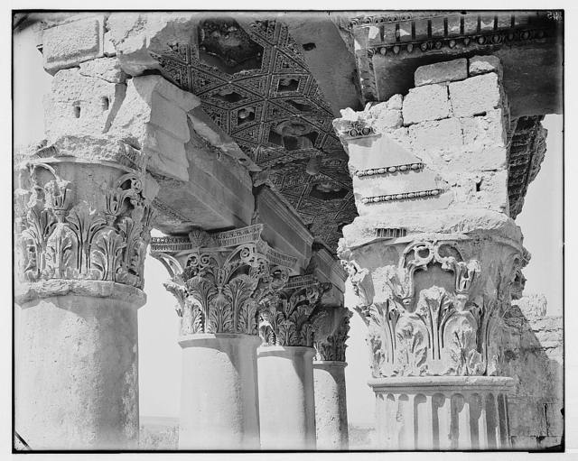 Detail of cornice [Baalbek]