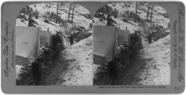 Gold miners and their dog teams, Dyea Trail, Alaska
