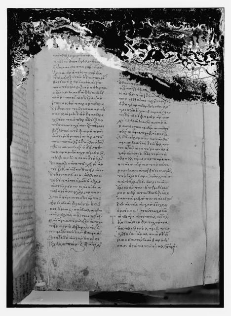 Greek MSS [i.e., manuscript], Saba, MS 394