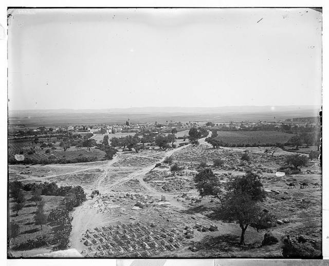 Jaffa (Joppa) and environs. General view of Ramleh (Arimathea)