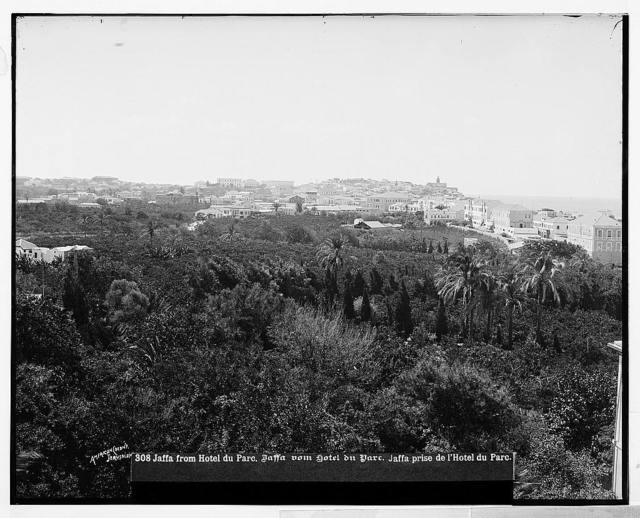 Jaffa (Joppa) and environs. Jaffa from the Hotel du Parc / American Colony, Jerusalem.