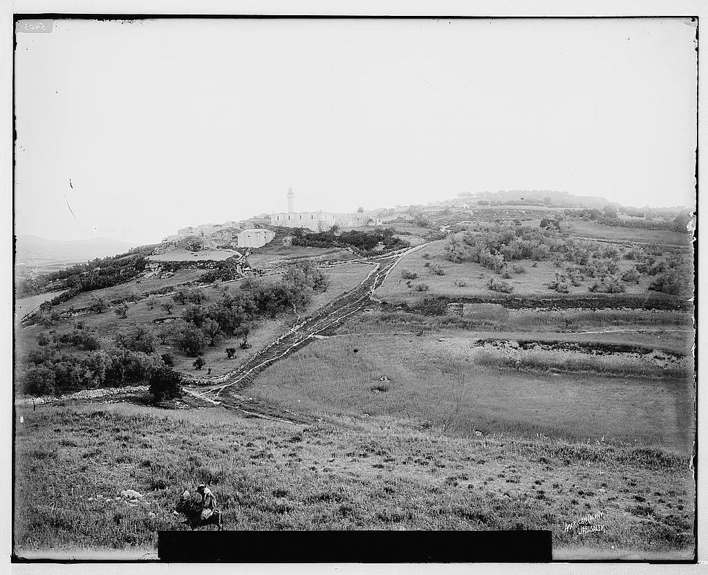 Northern views. General view of Samaria