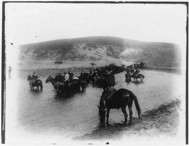 [Rough riders on horseback in water at Montauk Point]