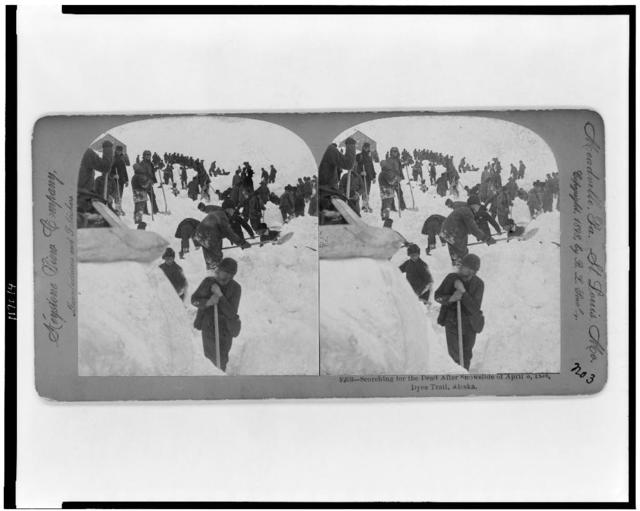 Searching for the dead after snowslide of April 3, 1898, Dyea Trail, Alaska