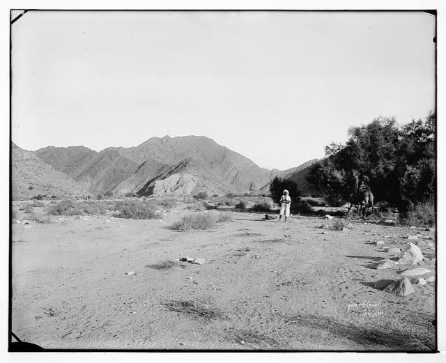 Sinai. Junction of Wady Esh-Sheikh and Wady Slaf. / American Colony, Jerusalem.