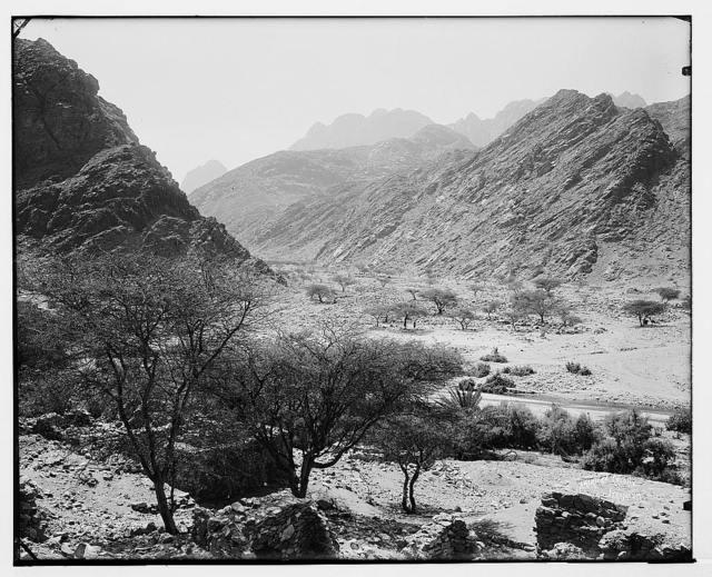 Sinai. Junction of Wady Feiran and Wady Aleyat.