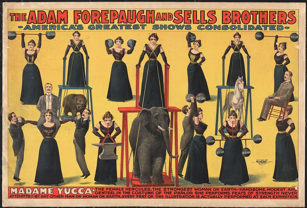 The Adam Forepaugh and Sells Brothers--America's greatest shows consolidated--Madame Yucca, the female Hercules, the strongest woman on Earth [...]