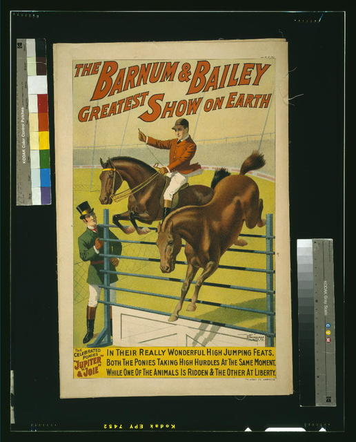 "The Barnum & Bailey Greatest Show on Earth--The celebrated ponies ""Jupiter"" & ""Joie"" ..."