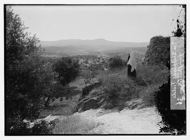 The Shepherds' fields from Bethlehem