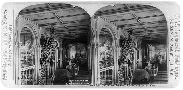 U.S. Smithsonian Institute - interior view