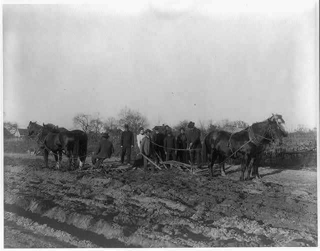 [American Indian and African American students at Hampton Institute, Hampton, Va. 1900(?) - men and women learning how to plow field]