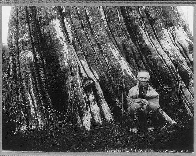 Cascade Mountains, near Seattle, Wash.: [Samson, an old sasquatch Indian, seated in front of a huge tree trunk]